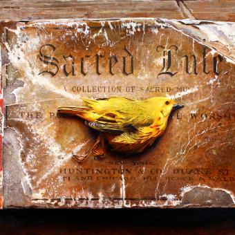 Sacred Lute
